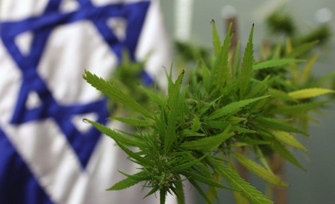 Cannabis in Israel