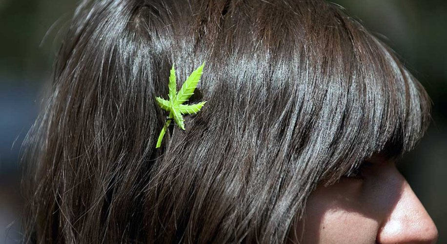 How Long Does Weed Stay in Your Hair?