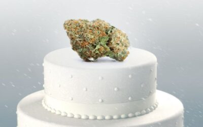 """What Is """"Wedding Cake"""" Weed and What Makes This Strain So Sweet?"""