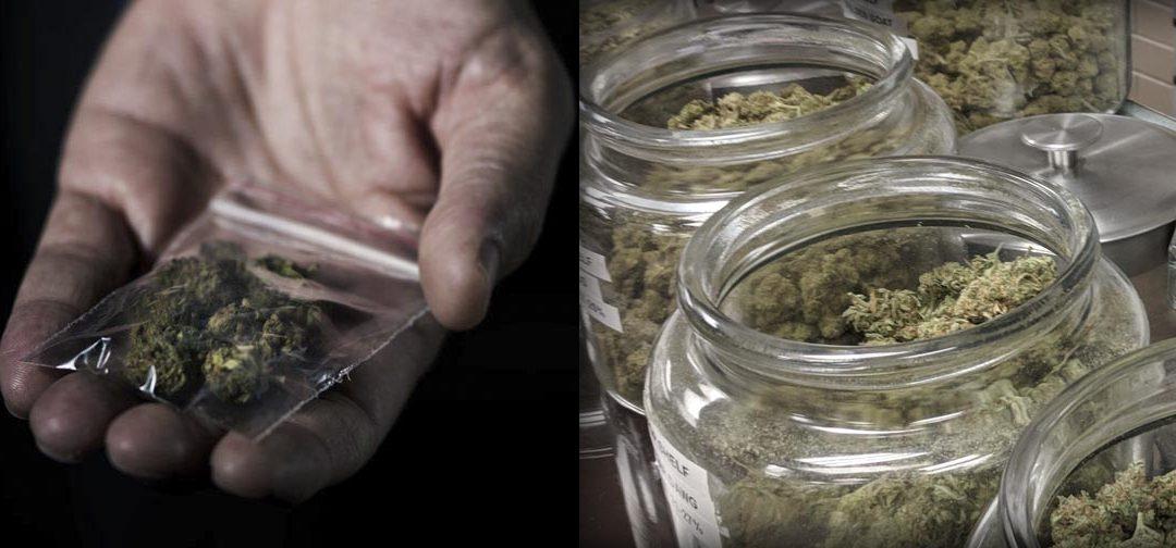 Dispensary vs Black Market Cannabis