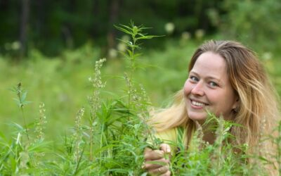 Top 6 Marijuana Strains To Unleash Your Creativity