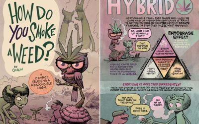 """Book (Comic) Review: """"How Do You Smoke a Weed"""""""
