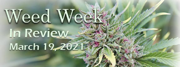 Weed Week in Review March 19, 2021