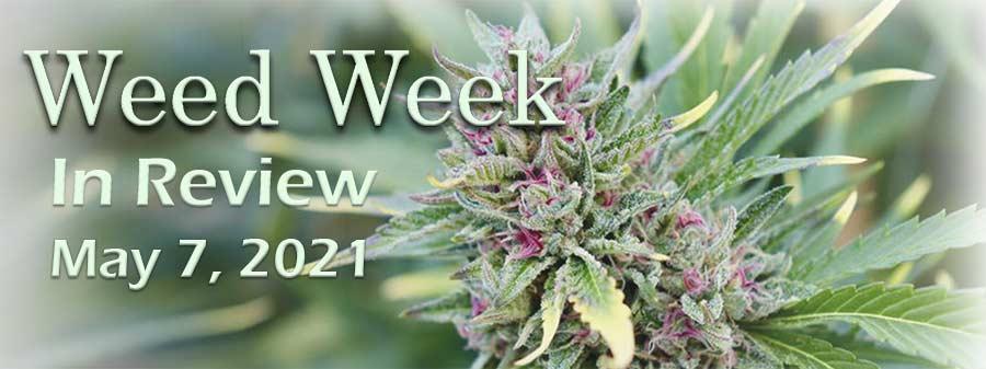 Weed Week in Review May 7, 2021